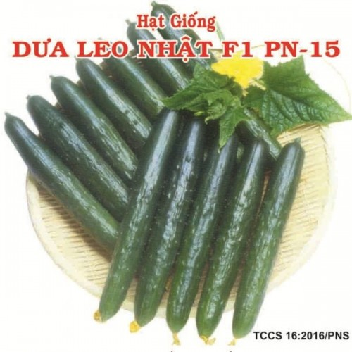 DƯA LEO NHẬT F1 PN-15